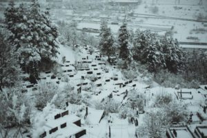 Dilijan Winter