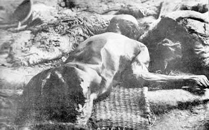 Body of Armenian worker, killed by Turks on the road near Mush